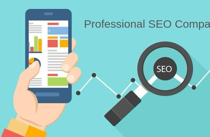 Difference Between an Ordinary SEO Service and a Professional SEO Company