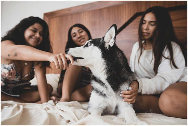 5 Gadgets To Make A Night Stay With Friends More Fun